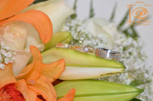 Wedding photography Quality Photography and Marketing Bahamas
