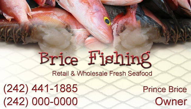 brice fishing business card wide copy.jpg