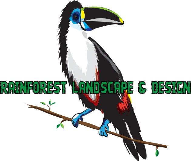 rainforest landscaping tucan